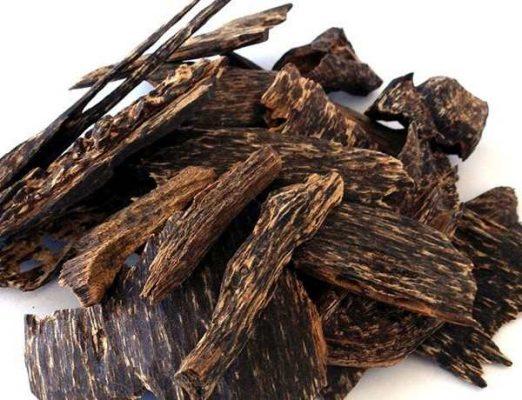 Trầm Hương là loại gỗ quý